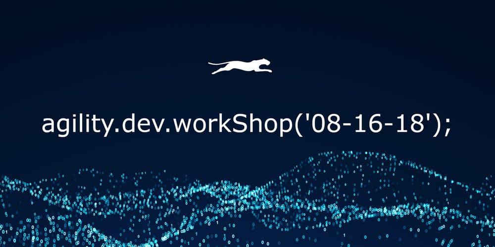 Agility Developer Workshop